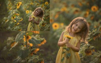 Tutorial nr 5 – Słoneczniki